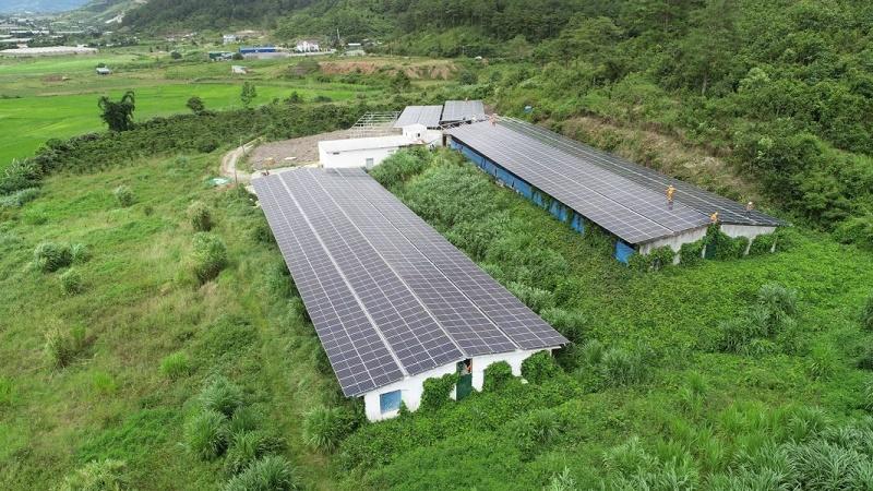 Giá điện mặt trời giảm sâu, doanh nghiệp vẫn có lợi